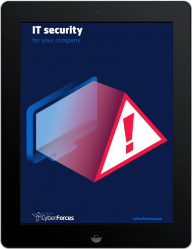 CyberForces - IT security ebook